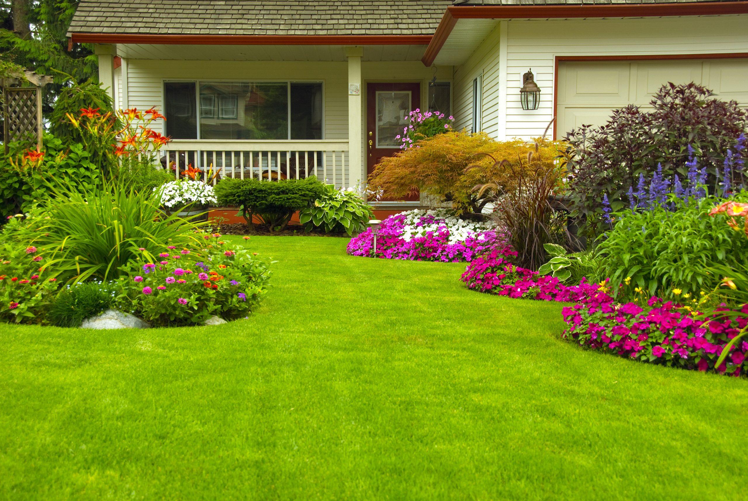 Garden Maintenance Waverley